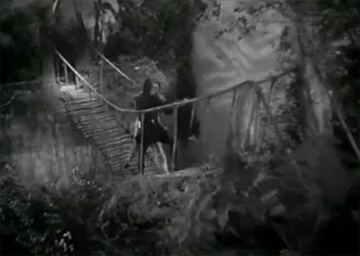 Phantom--suspension bridge