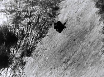 Wolf Dog--motorcycle chase