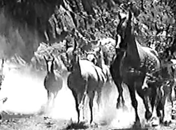 Gordon of Ghost City--stampede 2