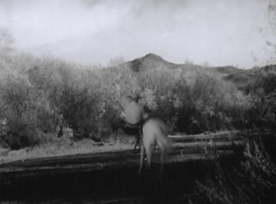 Lone Ranger--Canutt's mount