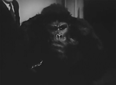 The Monster And The Ape The Files Of Jerry Blake