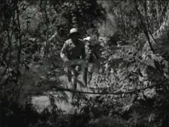 Jungle Jim--jungle