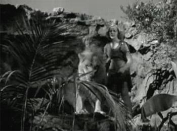 Jungle Jim--lion