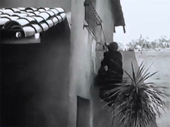 Vigilantes Are Coming--whip 1