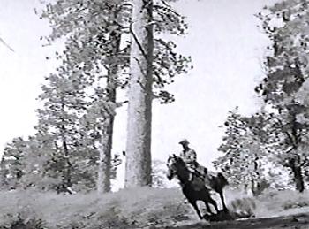 King of the Royal Mounted--horseback chase