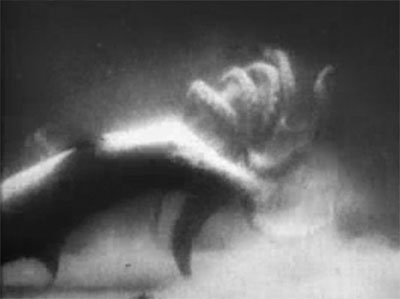 Sea Raiders--shark vs. octopus